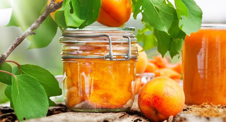 Eingekochte Aprikosen und ein Glas Smoothie mg_einkochen.jpg