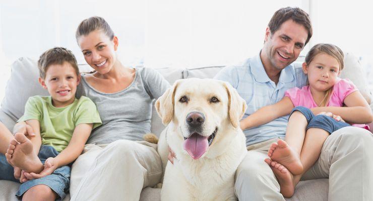 Glückliche Familie mit Hund in der Mitte mg_haustiere.jpg