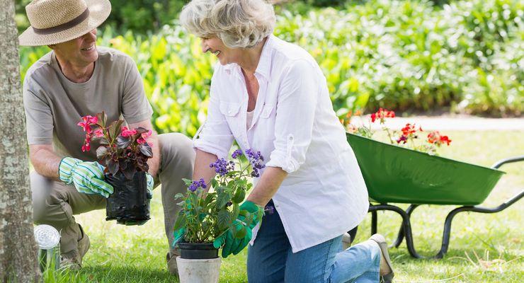 Paar arbeiten zusammen im Garten mg_gartenarbeit.jpg