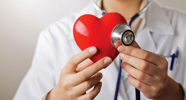 Arzt hält ein Stetoskop an ein Herz-Modell mg_koronare_herzkrankheit.jpg
